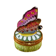 Mini Butterfly On Daisy Rochard Limoges Box