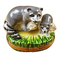 Raccoon W/Baby Rochard Limoges Box