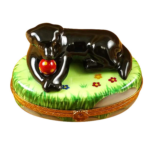 Black Lab W/Ball Rochard Limoges Box