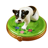 Boston Terrier Rochard Limoges Box