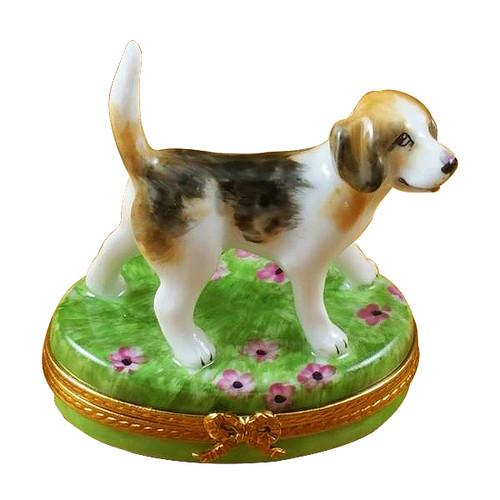 Beagle Rochard Limoges Box