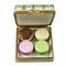 Square Box With Macarons De Paris Rochard Limoges Box