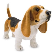 Griffin the Basset Hound