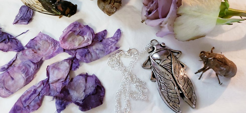 The Barefoot Witchery Shoppe