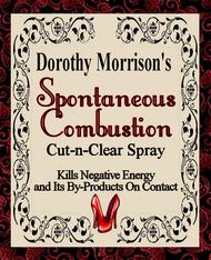 Dorothy Morrison's Spontaneous Combustion