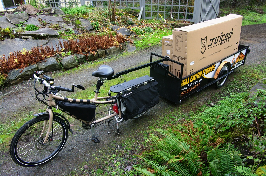 custom e-bike trailer