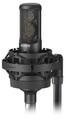 Sony C100 Microphone