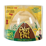Insect Lore Ant Hill Live Ants FarmTunneling Habitat