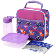 Arctic Zone Raccoon Fox 4 Piece Lunch Box Set, Insulated Lunch Bag Lunchbox Dino