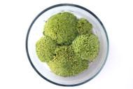 Pillow Moss (Leucobryum glaucum)