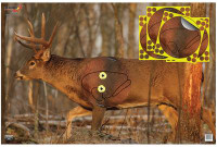 Eze-Scorer With Shoot-N-C Overlay Whitetail Deer Targets 23x35 Inch Two Folded Deer With Four 8-Inch Overlays - 029057374315