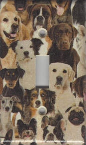 All Dogs Single Switchplate