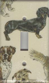 Dogs - Dachshund - Single Switch