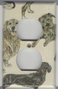 Dogs - Dachshund, Benji, Golden - Outlet