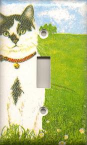 Black & White Cat - Single Switch