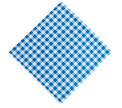 Gingham Lunch Napkins, Blue