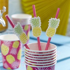 Pineapple Straws & Flags