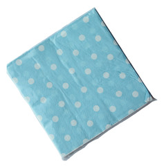 Polka Dot Napkins, Light Blue with White