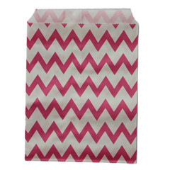 Treat Bag, Hot Pink Chevron