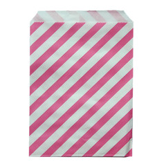 Treat Bag, Hot Pink Diagonal Stripes
