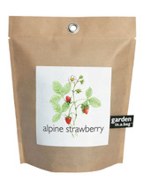 Garden-in-a-bag Strawberry