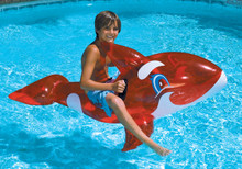 """60"""" Transparent Red Orca Ride-On"""