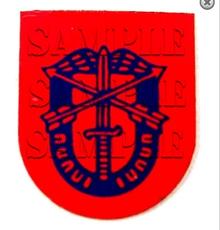 1/6th Scale GI Joe 60 Repro Green Beret Metal Badge Only