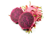 "Edgar's Baby Dragon Fruit - Hylocereus - Pitaya/Strawberry Pear - 4"" Pot"