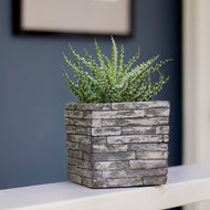 Mini Stone Wall Planter with Live Succulent Plant - Live Trends