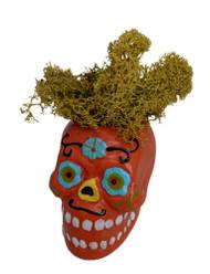 "Mini Orange Sugar Skull plus Colorful Moss - 2"" x 2"" Live Trends"