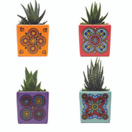 "Magnetized Kaleidoscope Planter with Live Plant - 3 x 3 x 5"" - Red - Live Trends"