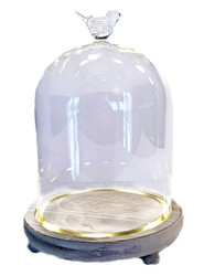 """Light Me Up LED Terrarium with Glass Bird and Live Plants - 7.5"""" x 5.5"""""""