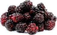 "Boysenberry - Rubus thornless - 2.5"" Pot"