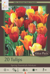 Spring Essentials Tulip Mix - 20 Bulbs - Vibrant Color! 12/+ cm Bulbs