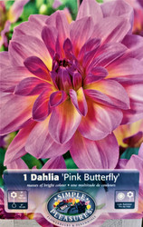 Pink Butterfly Decorative Dahlia - #1 Size Root Clump
