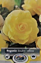 Double Yellow Begonia - 2 Bulbs - 5/6 cm