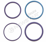Volvo O-Ring Kit for Injector Unit (S-23246)