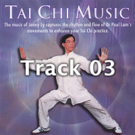 Tai Chi Music - 03 River of Qi (single track)