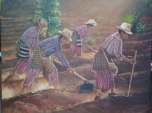Otto Gonzalez -- Field workers, Solola