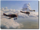 13th Aero Squadron by Jim Laurier Aviation Art