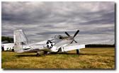 Splendor In The Grass Aviation Art
