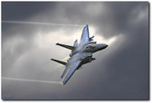 Screaming Eagle Aviation Art