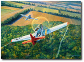 The Color of Courage by Rick Herter - P-51C Mustang, German Focke-Wulf 190 Aviation Art
