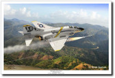 "Defender of the Fleet by Mark Karvon - VF-84 ""Jolly Rogers""  F-4B Phantom II"