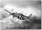 On The Move P-51