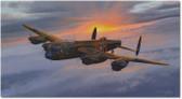 Lancaster portrait
