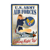 Air Force Pinup