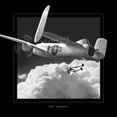 "B-25 Mitchell ""Tailgunner"""