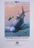 Seafire Against the Sun