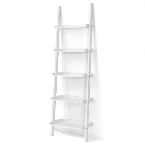 5-Tier Wall-leaning Ladder Shelf  Display Rack for Plants & Books-White